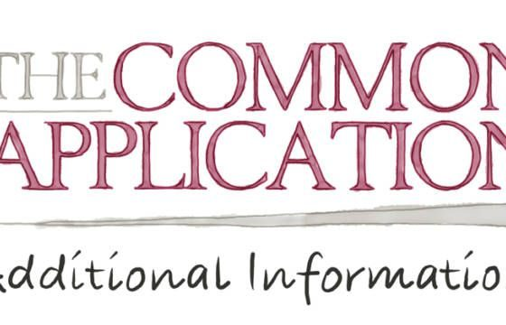 additional information common app